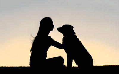 """""""Ein Kind ist kein Hund"""" oder """"Was Konditionierung mit uns macht"""""""